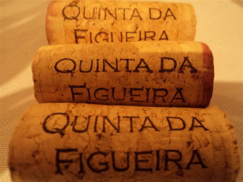 figueira5